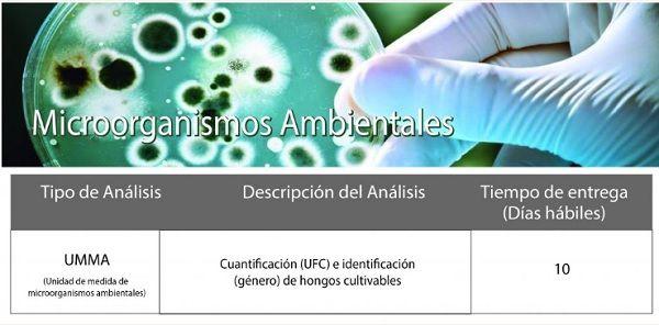 Laboratorio-en-microorganismos-ambiental