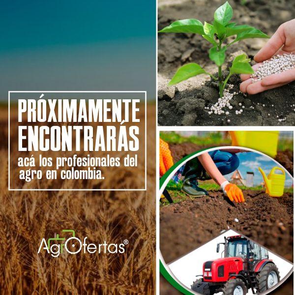 Profesionales y técnicos del agro