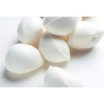 Boconccini en  Agrofertas®