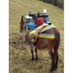Equipos para Caballo en  Agrofertas®