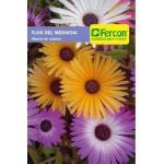 Flor del Medio día en  Agrofertas®
