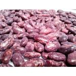 Frijol Radical-Arbustivo en  Agrofertas®