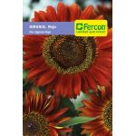 Girasol Flor Gigante Roja en  Agrofertas®