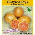 Guayaba Roja Semillas vende  El Semillero