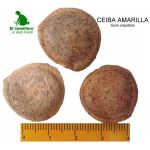 Ceiba Amarilla Semillas en  Agrofertas®