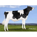 Semen Toro Holstein Suizo Avatar en  Agrofertas®