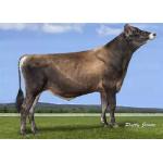Semen Toro Holstein Suizo Jx Clearcut-3 en  Agrofertas®