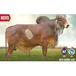 Leche GYR Nobrega en  Agrofertas®
