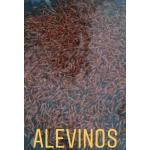 Alevinaje en  Agrofertas®