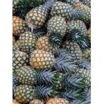 Desde Agrofertas entras en contacto con Piña del Upía SAS para  cotizar o comprar Piña