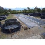 Estanques para Pisicultura vende  Disambiental Ltda