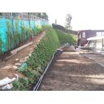 Desde Agrofertas entras en contacto con Disambiental Ltda para  cotizar o comprar Manto Sintético para Controlador de Erosión
