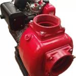 Motobomba Autocebante Motor Diesel en  Agrofertas®