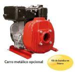 Motobomba Autocebante con Motor Diesel en  Agrofertas®