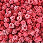 Fruta Congelada de Mora en  Agrofertas®