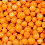 Fruta Congelada de Uchuva en  Agrofertas®