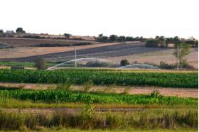 CAÑONES ESTERCOLEROS en  Agrofertas®