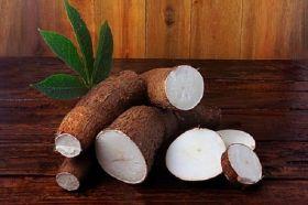 Harina sin Gluten de Yuca en  Agrofertas®