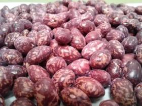 Frijol Cargamanto-Enredadera en  Agrofertas®