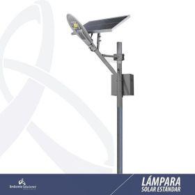 Lampara Solar Led con Poste Línea Estándar 30W 6m 12 Horas en  Agrofertas®