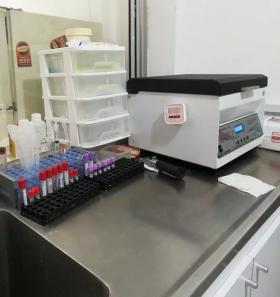 Prueba Química Sanguínea en  Agrofertas®