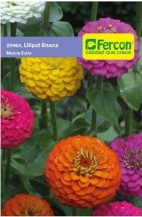 Zinnia Iliput Enana en  Agrofertas®